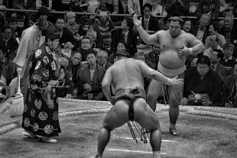 Sumo wrestling competition