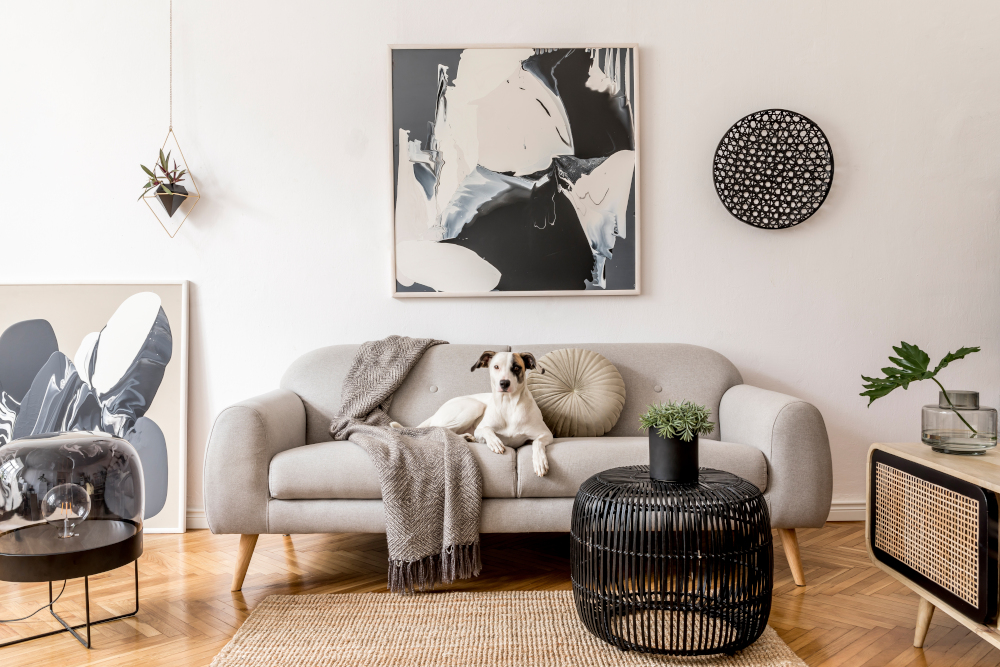 Stylish and scandinavian living room interior