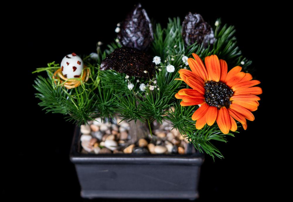 rikku flowers dish