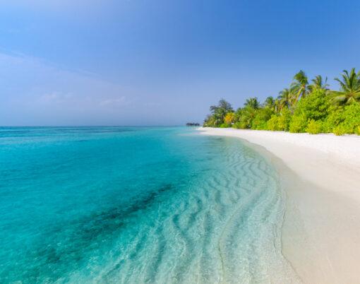 Luxury tropical beach