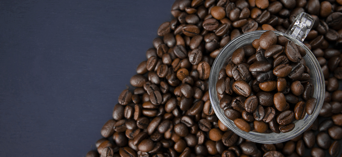 Maverick and Farmer coffee brewers