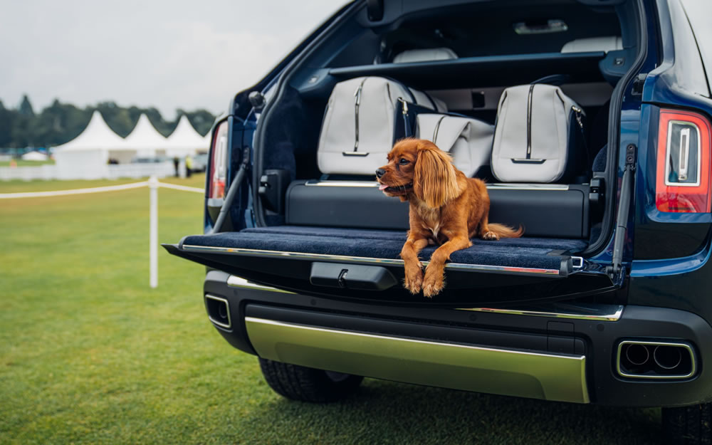 Rolls-Royce Cullinan with dog in the boot