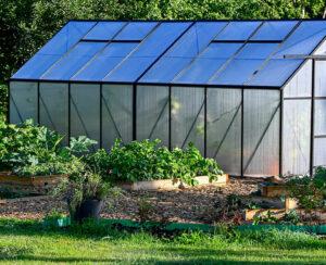 bigstock-Greenhouse-And-Culvitating-Box-430585115